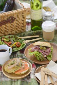 Bagel sandwich on picnic